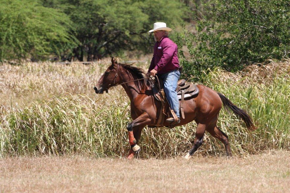 Gunstock Ranch image 6