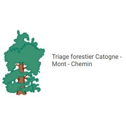 Triage forestier Catogne - Mont - Chemin
