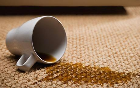 Gary's Carpet Cleaning and Upholstery