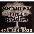 Macon Tree Service by Bradley Tree Works