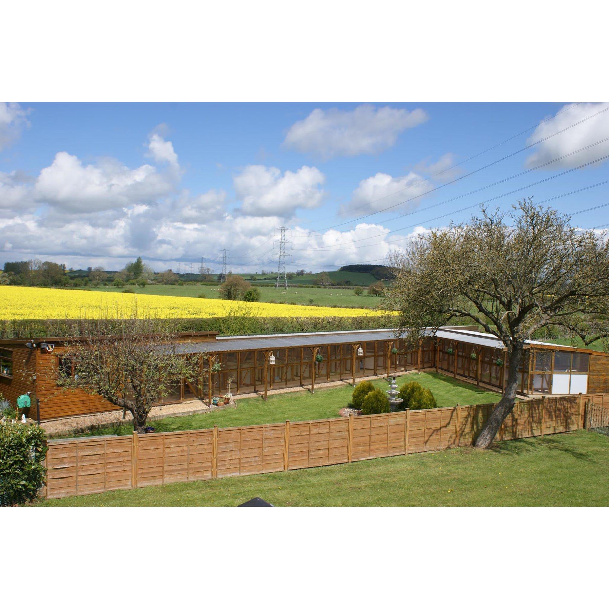 Cloverlea Cattery - Northampton, Northamptonshire NN7 4NQ - 01327 341475   ShowMeLocal.com
