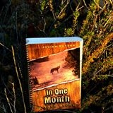 In One Month: A True Story
