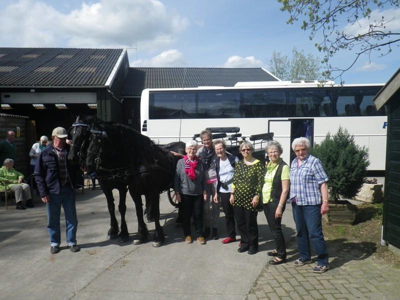 Wijbenga Friese Paardenhouderij