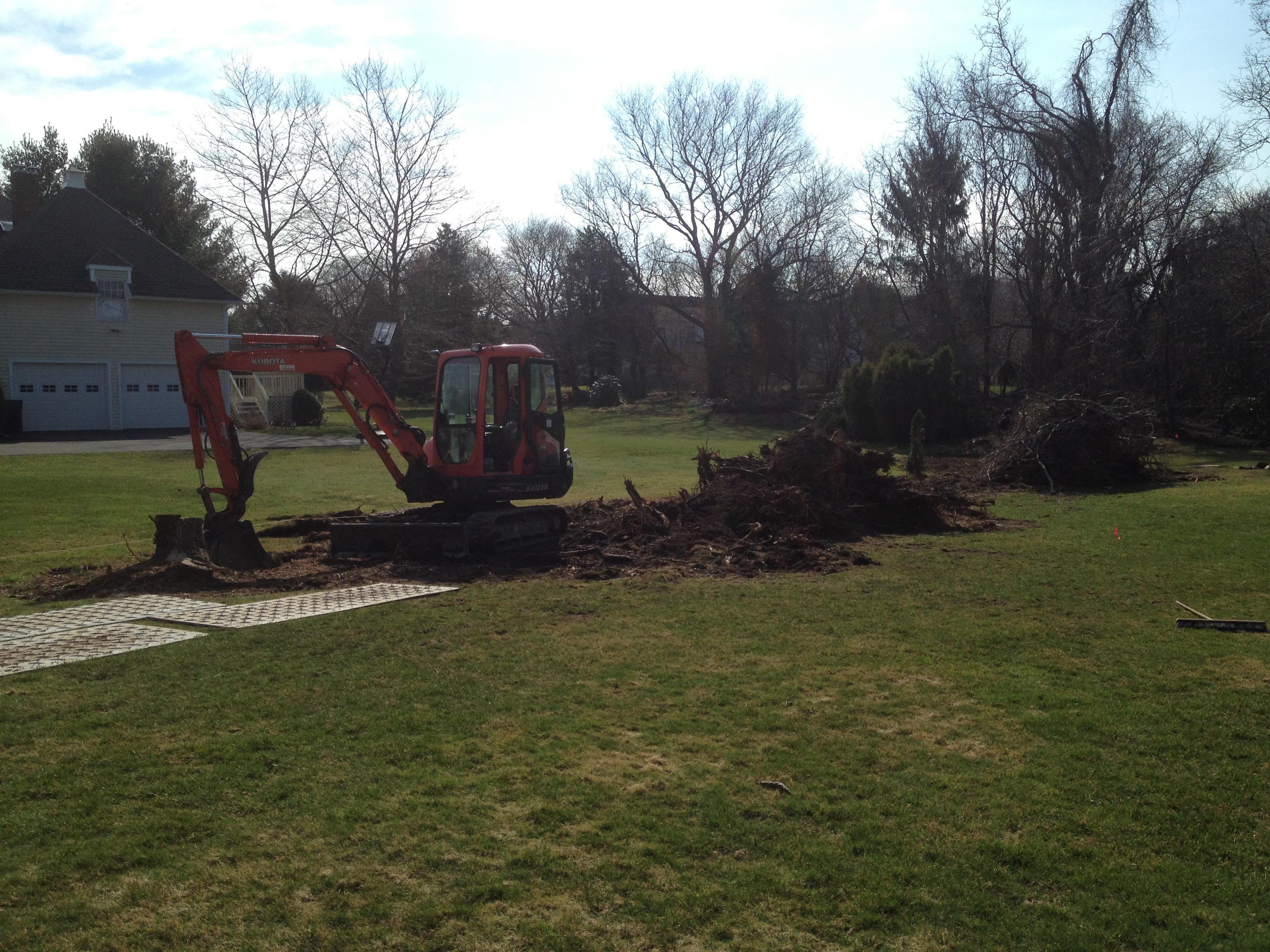 Riccio Landscaping & Tree Service image 9
