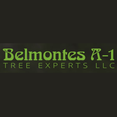 Belmontes A-1 Tree Experts LLC - Milford, NJ - Tree Services