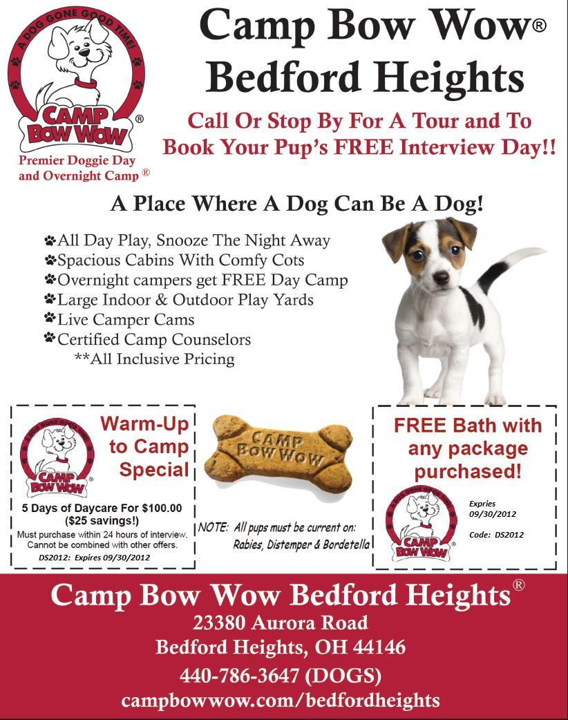 Dog Day Care Bedford