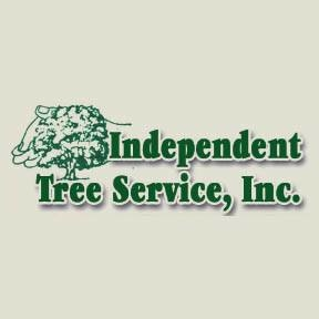 Independent Tree Service Inc image 7