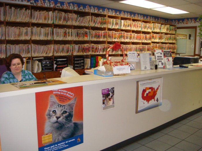 Veterinary Hospitals In Myrtle Beach Sc