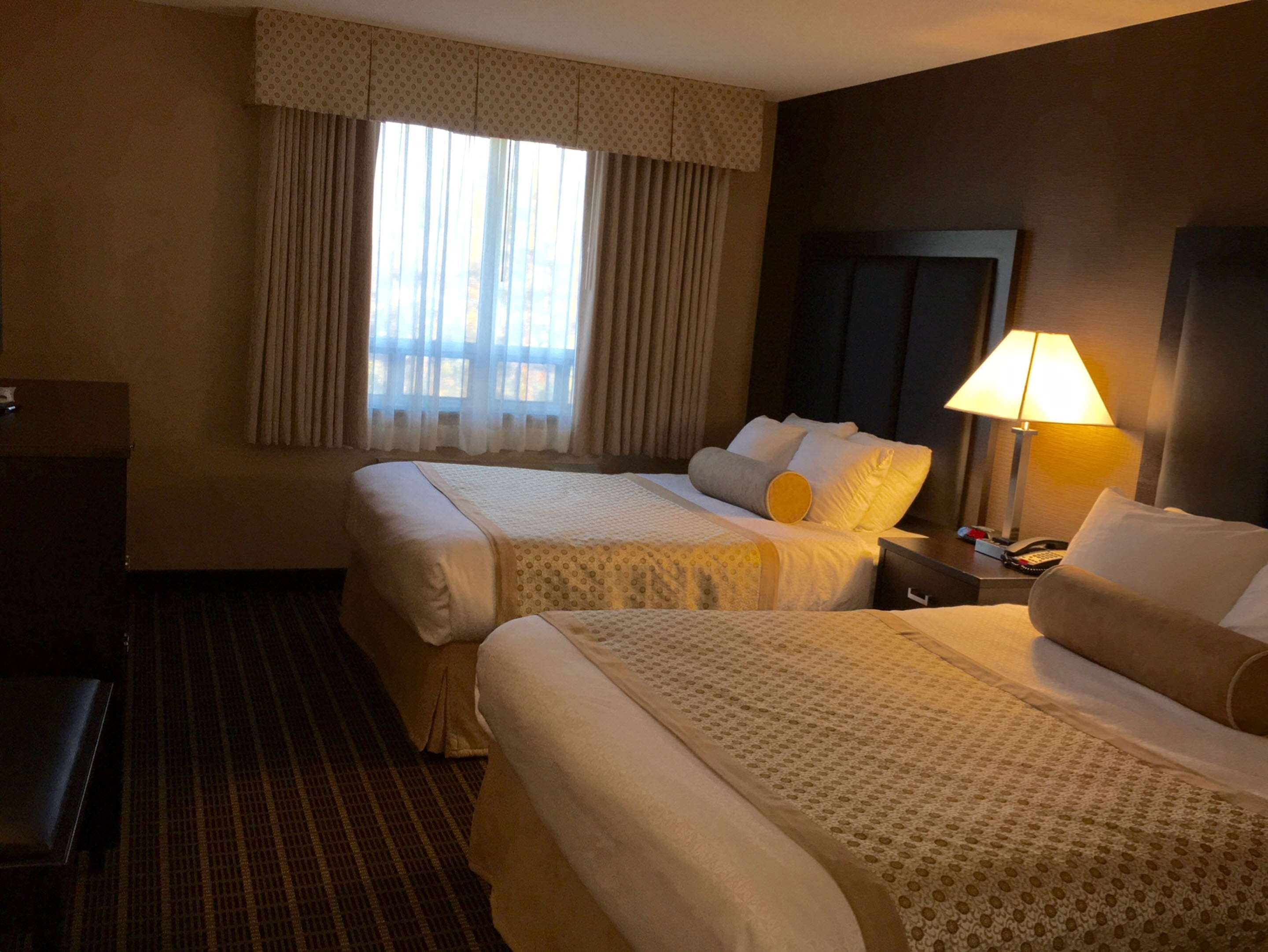 Double Queen Guest Room Best Western Plus Burlington Inn & Suites Burlington (905)639-2700