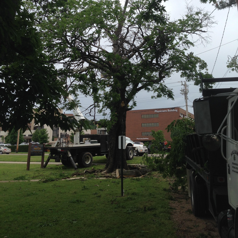 KILLIAN'S TREE SERVICE - Fort Smith, AR 72904 - (479)561-4731 | ShowMeLocal.com