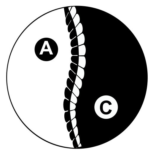 Acu-Care Acupuncture & Chiropractic