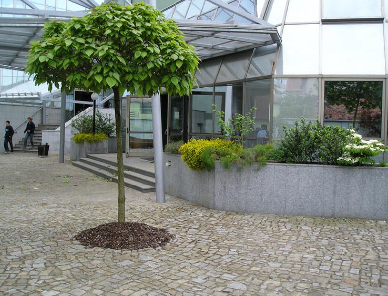 Bo Tree zahradní ateliér s.r.o.