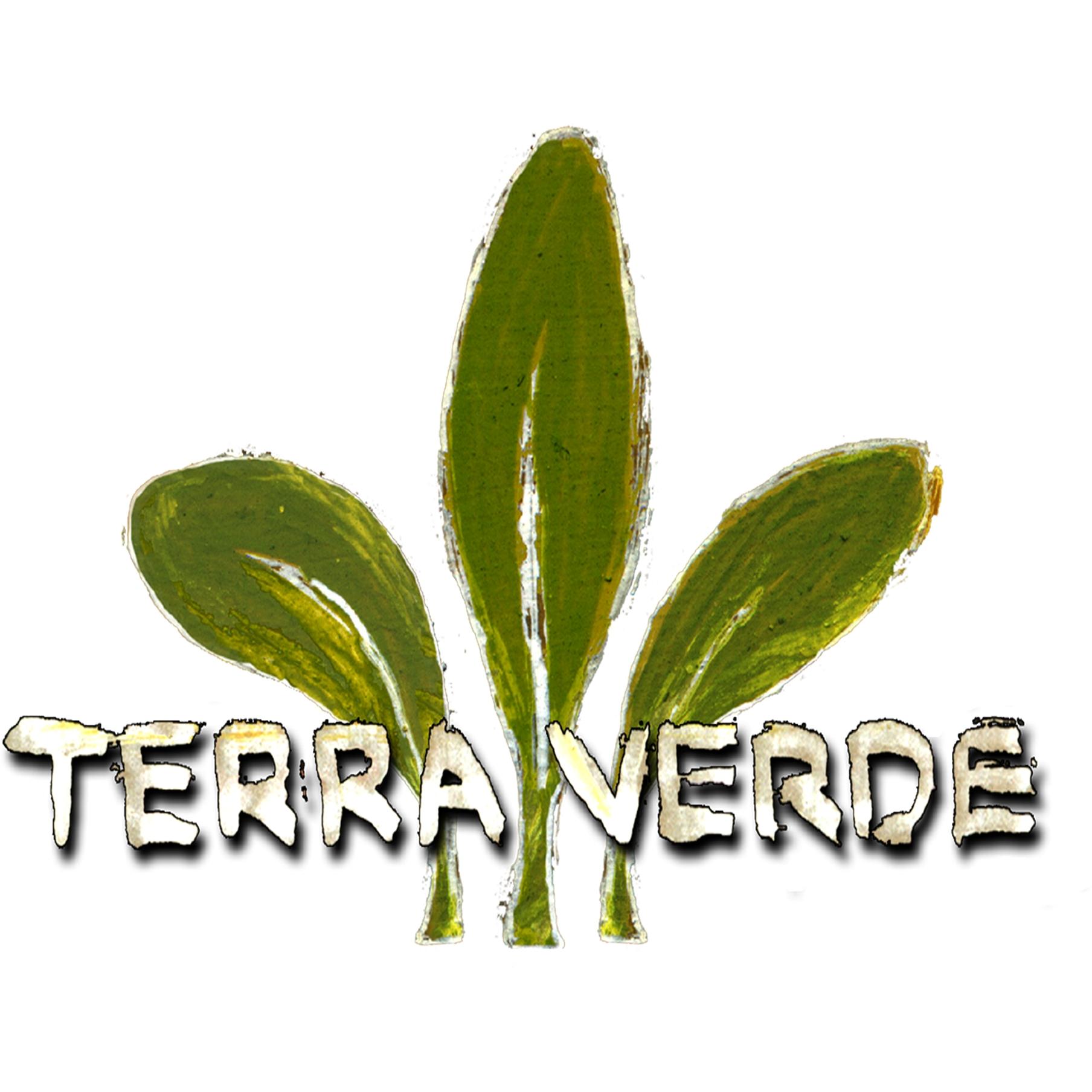 Bild zu Terra Verde Gartengestaltung in Kirchensittenbach
