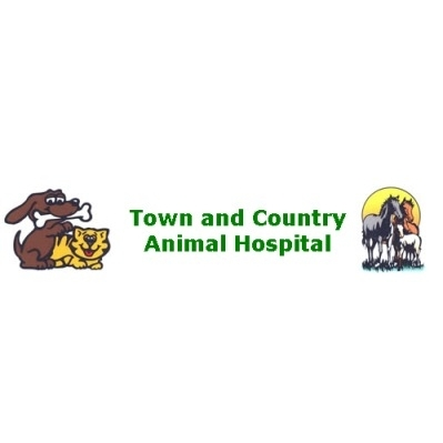 Town and Country Animal Hospital - Choctaw, OK - Veterinarians