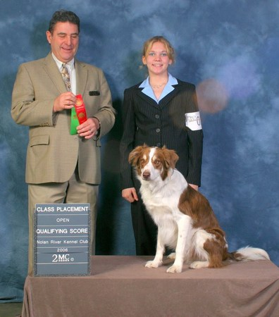 Image 8   Buddy's Dog School