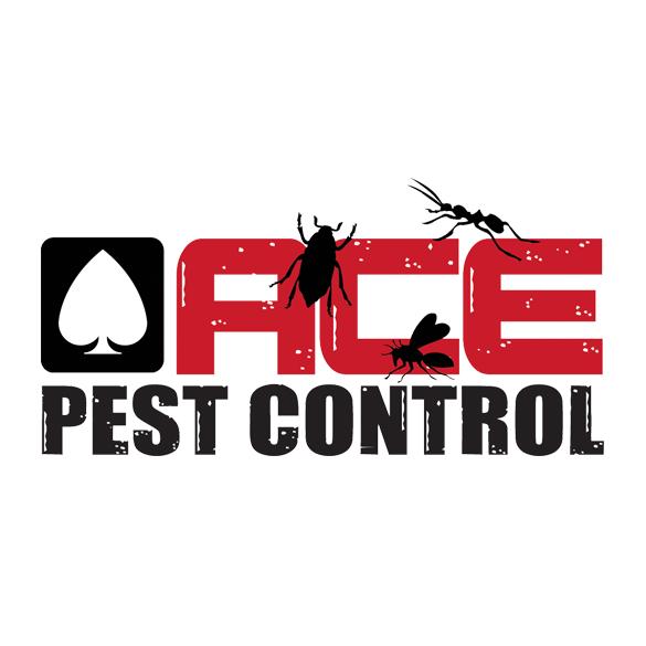 pest control mission tx - 585×585