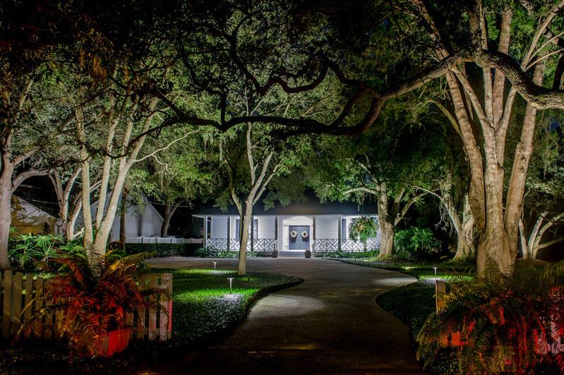 South Tampa Home Landscape Lighting