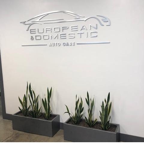 European and Domestic Auto care