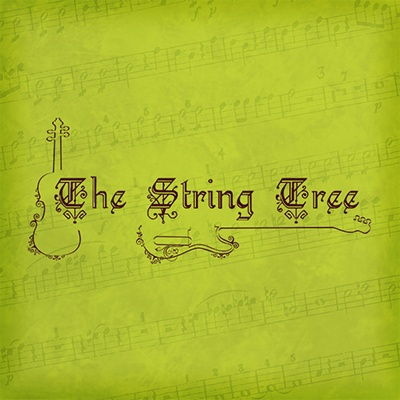 The String Tree - Sinking Spring, PA - Musical Instruments Stores