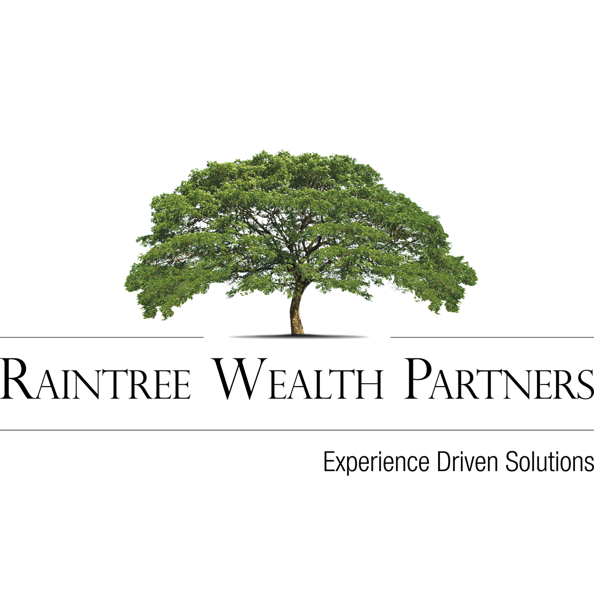 Raintree Wealth Partners