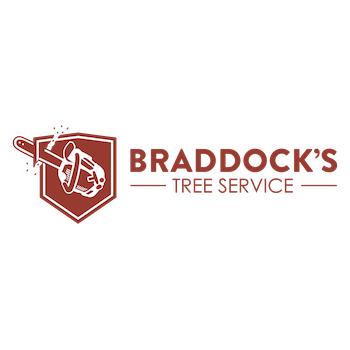 Braddock's Tree Service - Jacksonville, FL 32218 - (904)343-1527 | ShowMeLocal.com