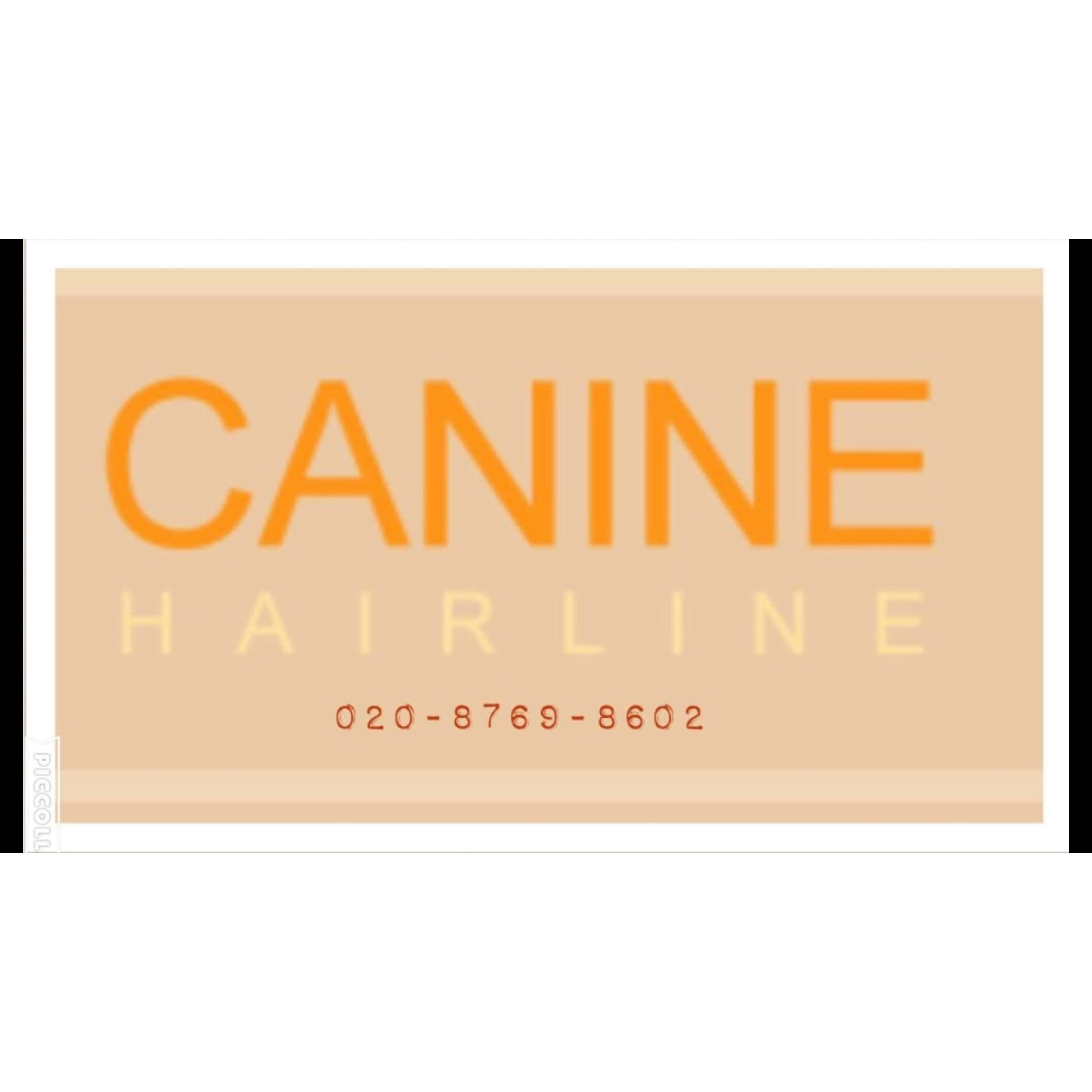 Canine Hairline London 020 8769 8602