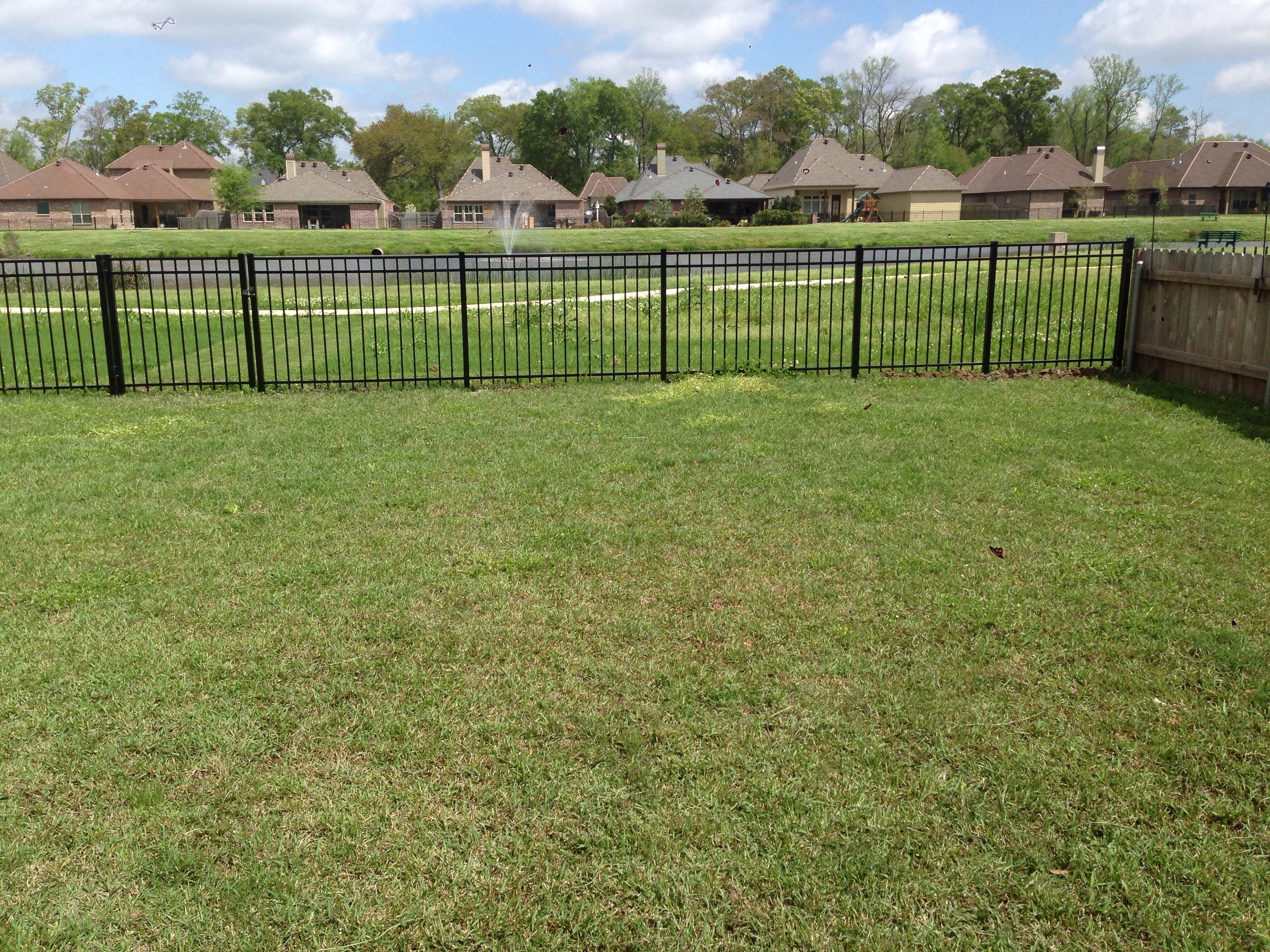 Louisiana Guard Dog Reviews