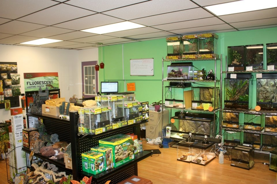 Jabberwock Reptiles Coupons near me in Winchester | 8coupons