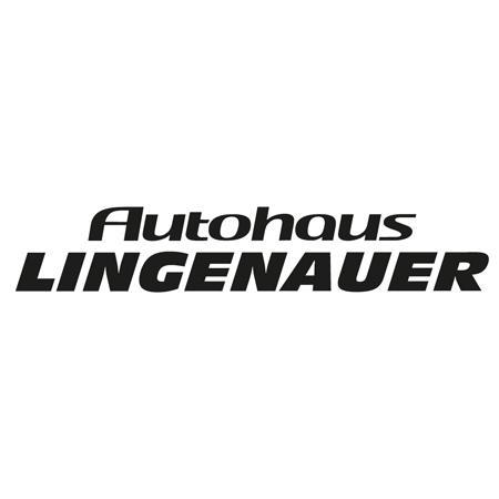 Bild zu Autohaus Lingenauer Betriebs GmbH in Marienberg in Sachsen