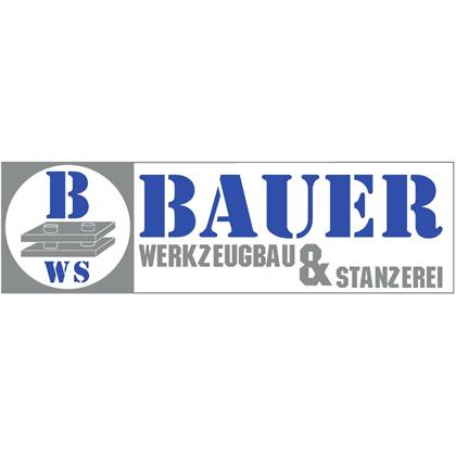 Bild zu Bauer Werkzeugbau und Stanzerei GmbH in Lößnitz