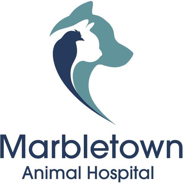 Marbletown Animal Hospital - Stone Ridge, NY 12484 - (845)288-2309 | ShowMeLocal.com