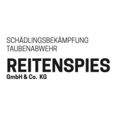 Bild zu Schädlingsbekämpfung Reitenspies GmbH & Co. KG in Wenzenbach