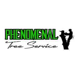 Phenomenal Tree Service