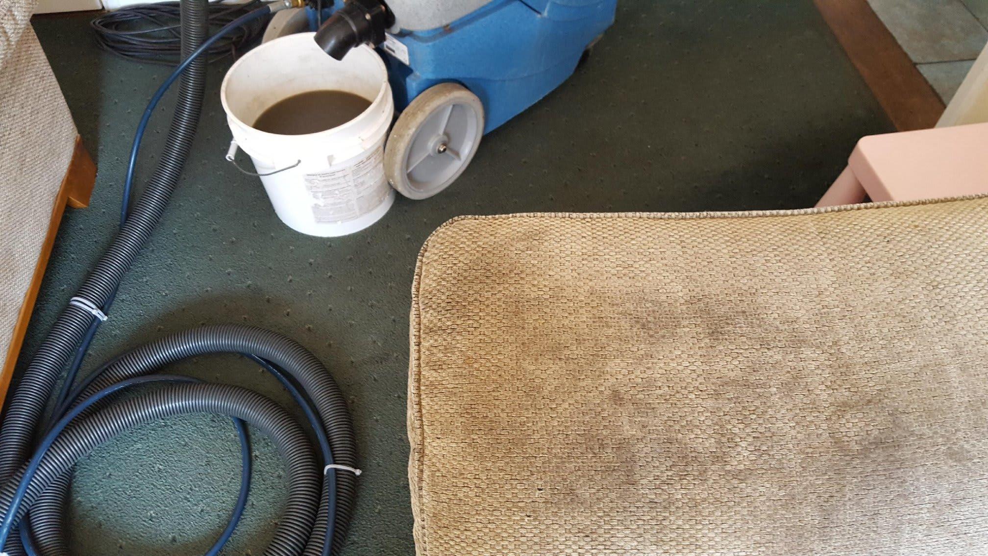 Cole Carpet Care