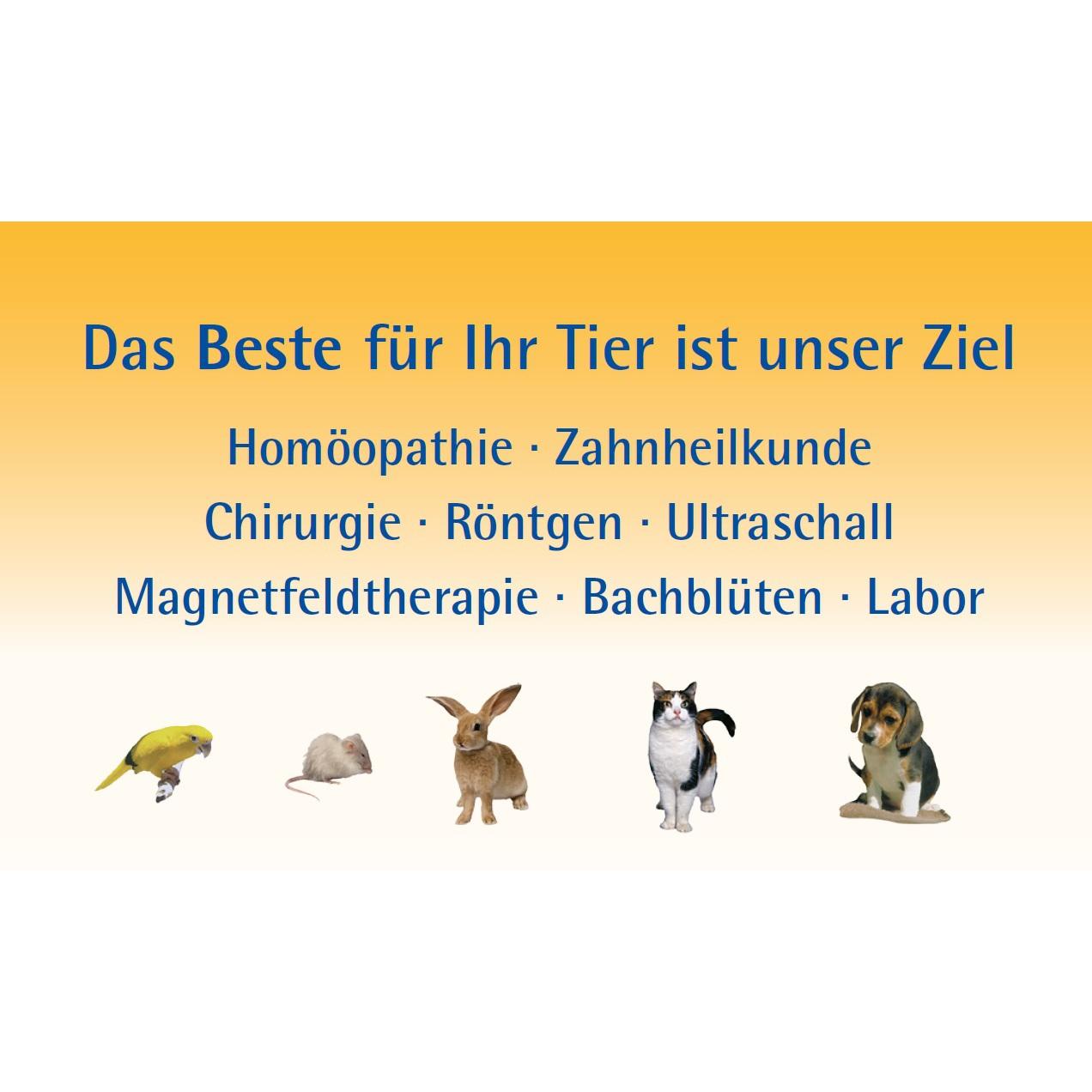Bild zu Tierarztpraxis Dr. med. vet. Ute Lederer in Stein in Mittelfranken