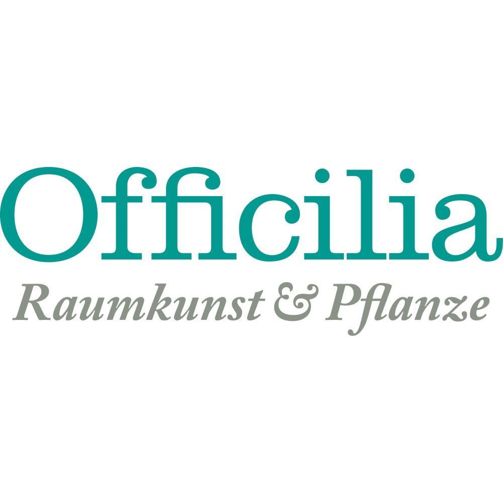 Bild zu Officilia Raumkunst und Pflanze - hochwertige Kunstpflanzen, Gefäße und Beratung in Mülheim an der Ruhr
