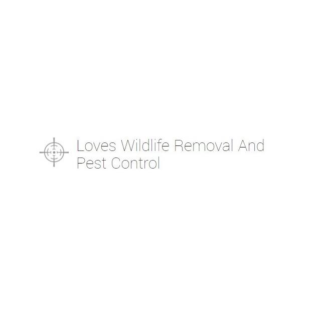 Love's Wildlife Removal & Pest Control - Bay Shore, NY 11706 - (516)662-2400 | ShowMeLocal.com