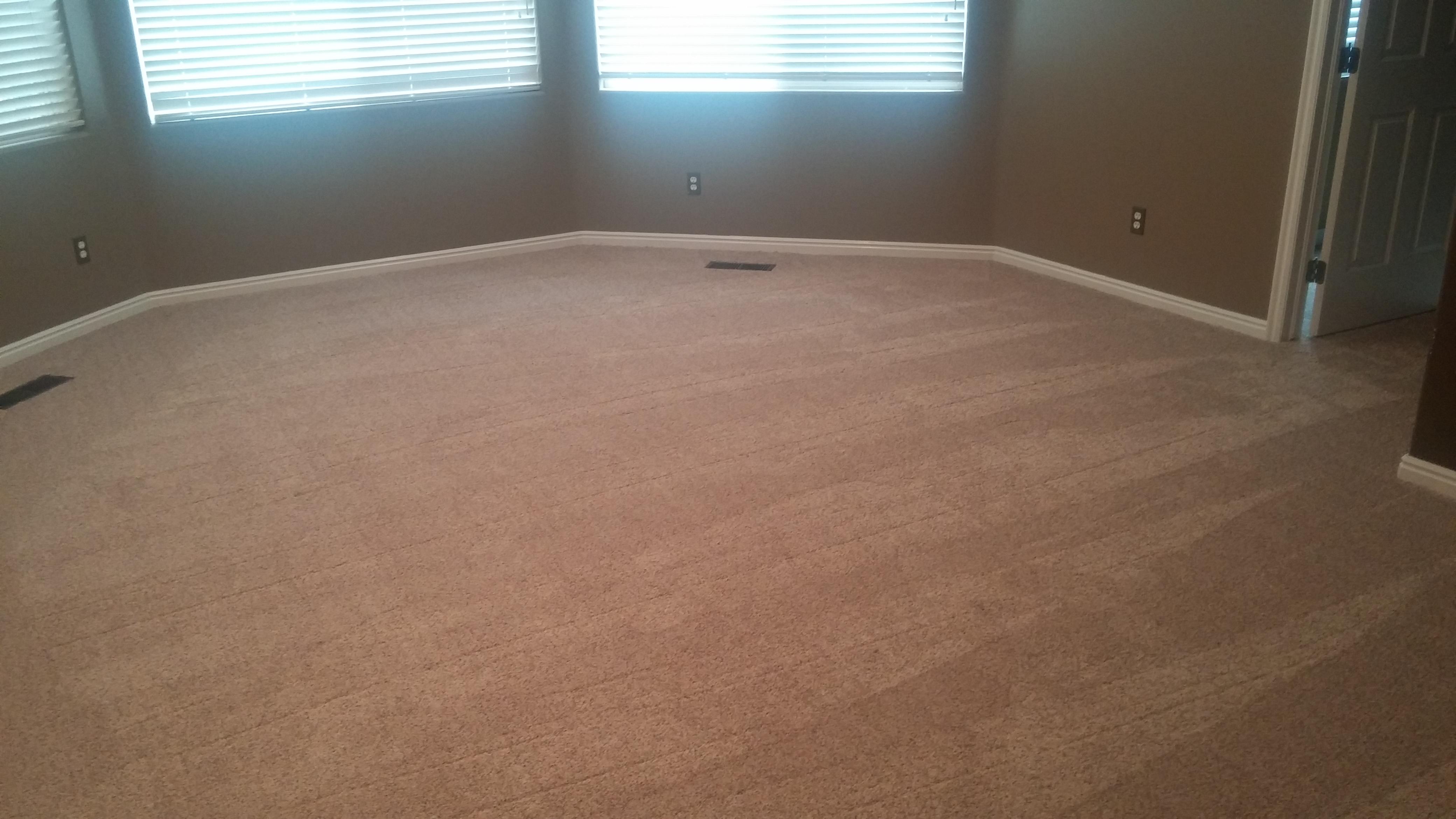 Schumacher Carpet St George Floor Matttroy