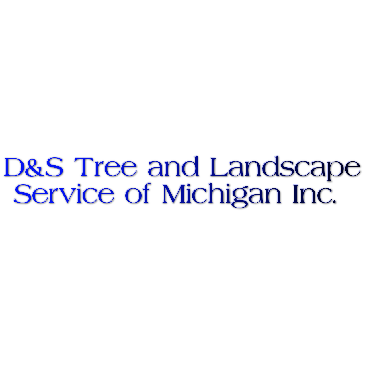 D&S Tree and Landscape Service of Michigan Inc.