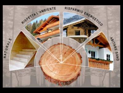 Energia estrazione legno a laion infobel italia for Italia legno energia