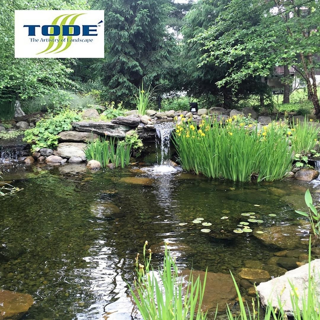 Tod landscape contractors inc in midland park nj 07432 for Gardening contractors