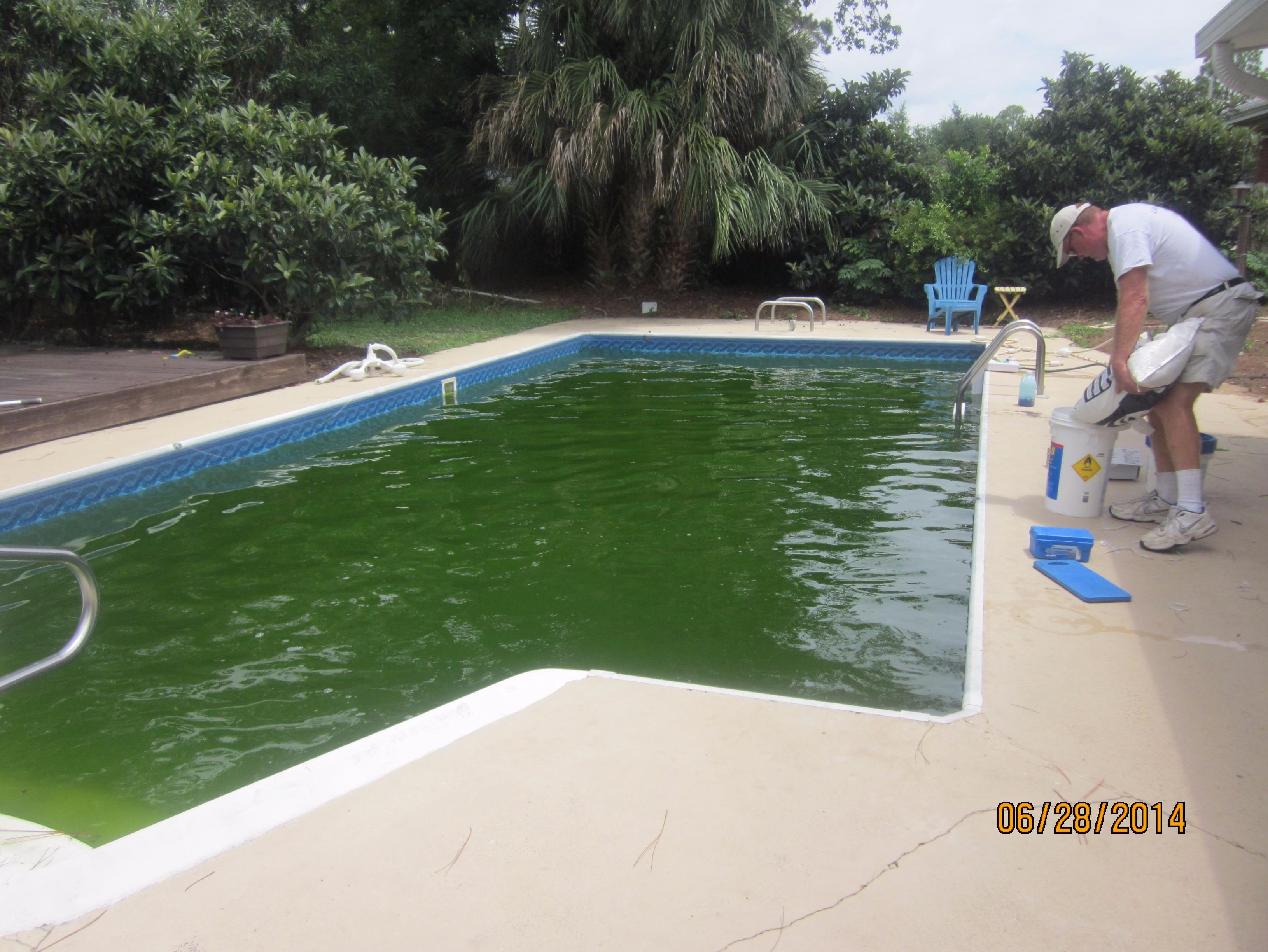 Classic pool care inc in gulf breeze fl 32561 for Pinch a penny pool pump motors
