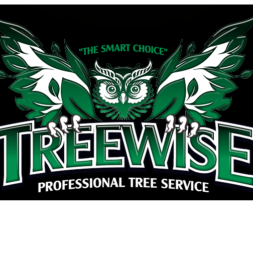 TreeWise LLC