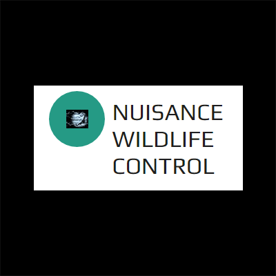 Nuisance Wildlife Control