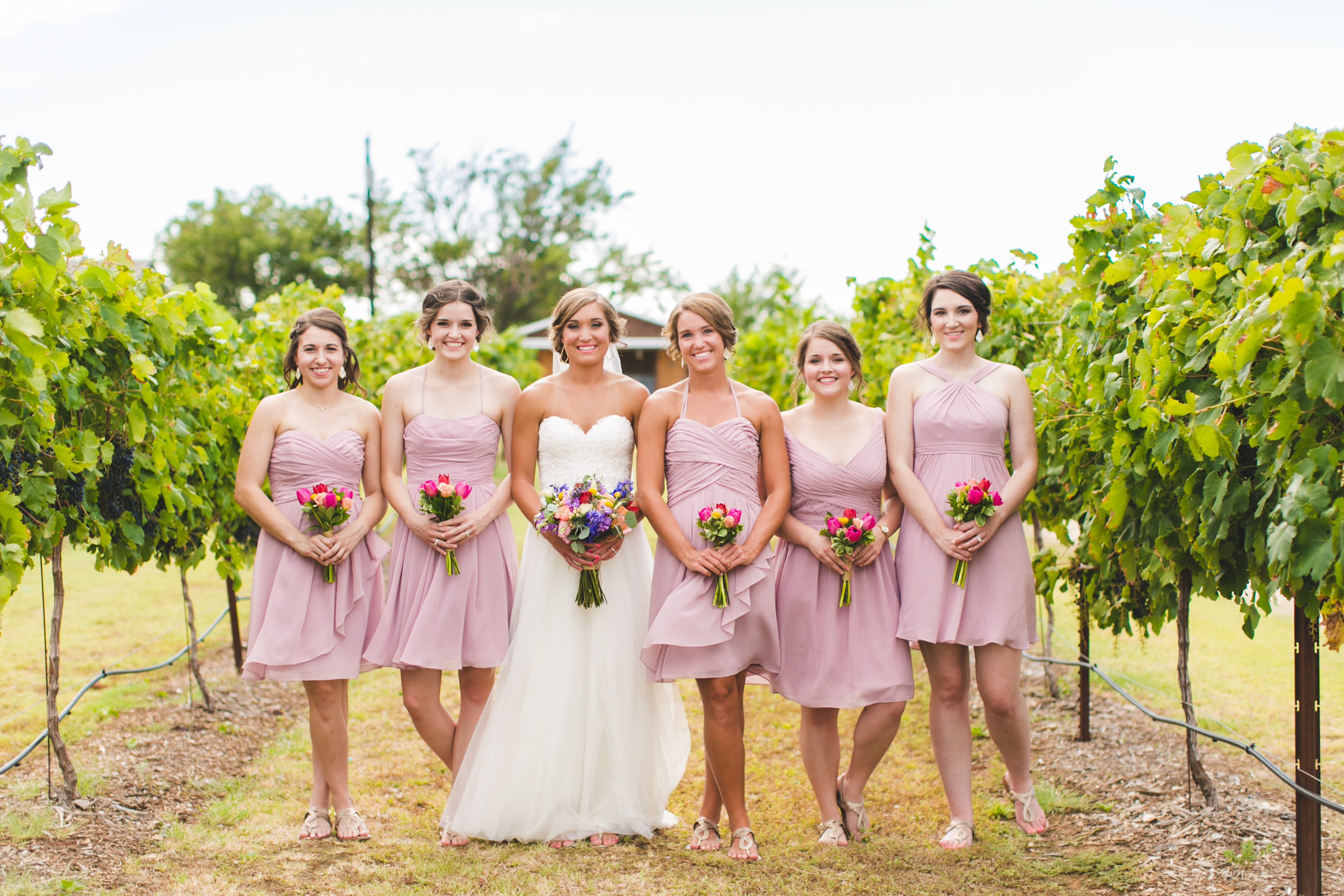 valley farms A rustic farm venue with a touch of elegance nestled in the beautiful valleys of west st charles county, valley farms is sure to be the perfect spot for you to begin your once-in-a-lifetime journey.