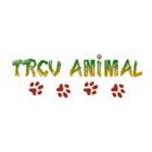T R C V Animal