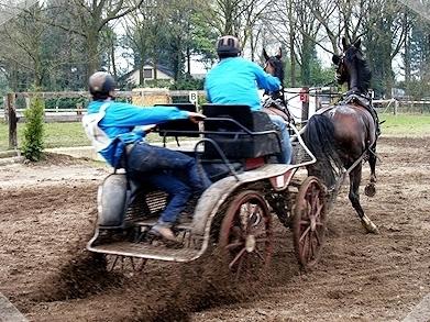 Paardensportcentrum De Kempen