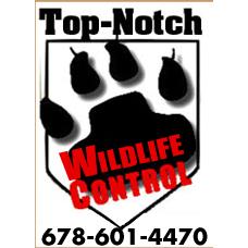 Top-Notch Animal Removal