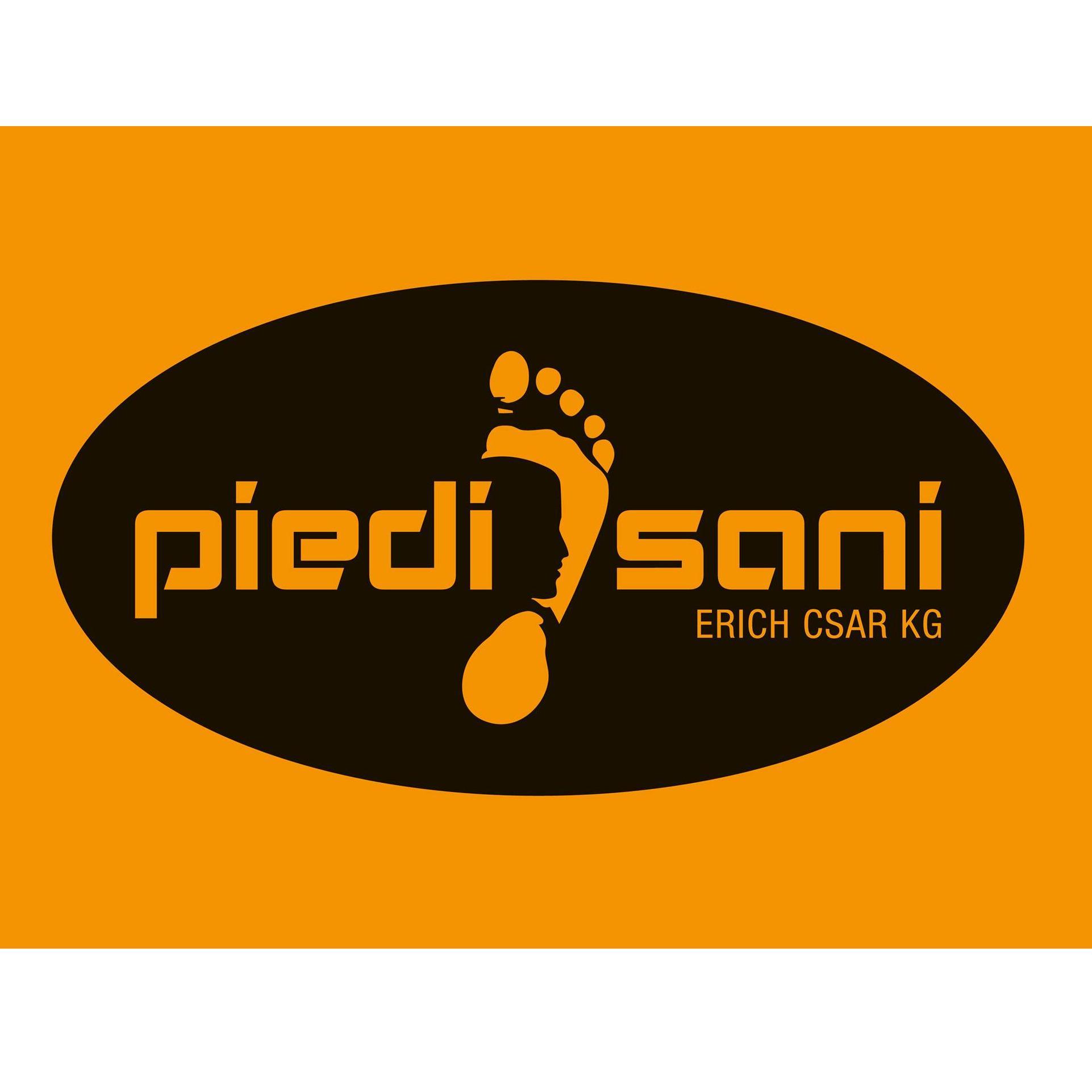 Piedi Sani - Erich Csar KG Orthopädie + Schuhtechnik in 8280 Fürstenfeld - Logo