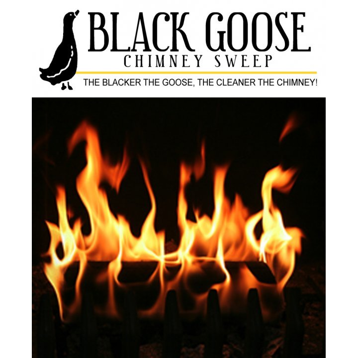 Black Goose Chimney - Newport News, VA - House Cleaning Services